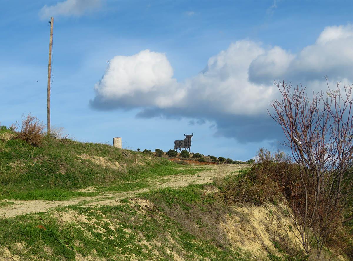 Alone on the Hill / Solo en la Colina