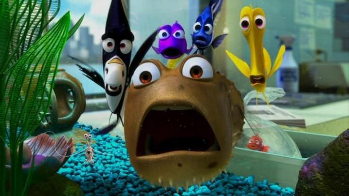 Finding Nemo? / ¿Buscando a Nemo?