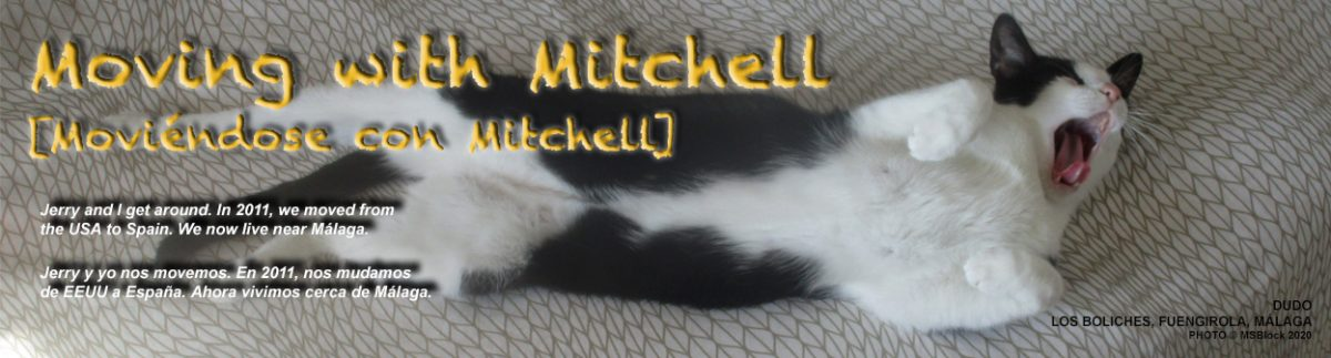 Moving with Mitchell