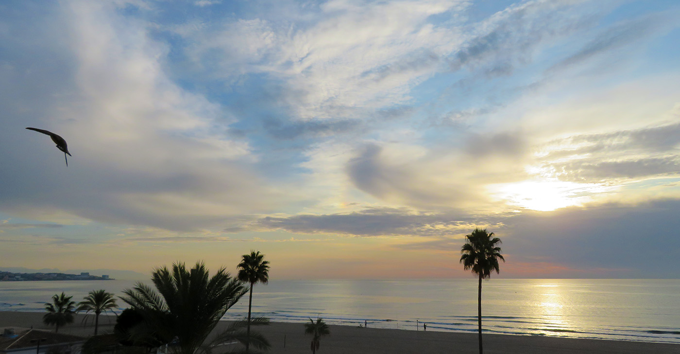 Click for our view this morning. The clouds are gone and it's 71F (22C).<br>Haz click para nuestra vista esta mañana. Las nubes se han ido y hace 22c (71F).