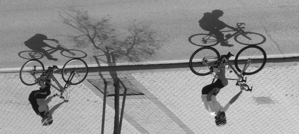 Cycles / Ciclos